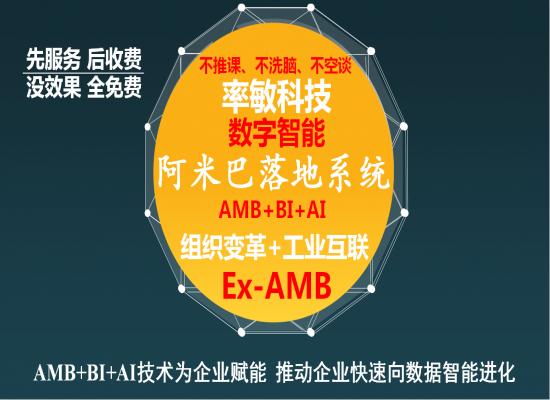 阿米巴建模系统2019微信版V6.0